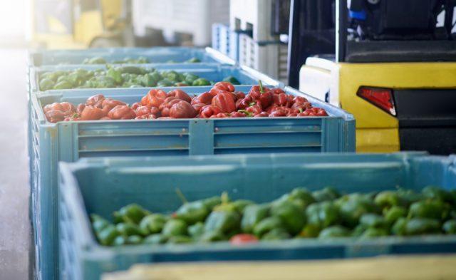 Mesa Brasil passa a integrar Rede Brasileira de Bancos de Alimentos